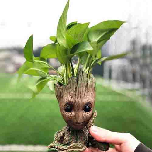 Groot Man planet pot with plant coming out of its head
