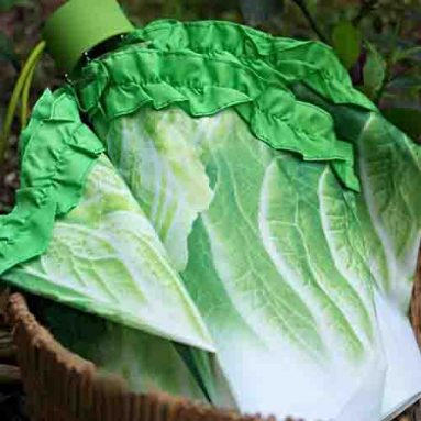 Cabbage Umbrella